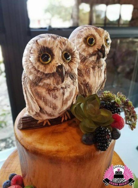 Baby Owl Pair Rustic Wedding Cake Toppers
