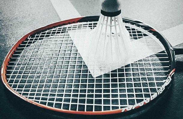 Badminton Date Idea Activites