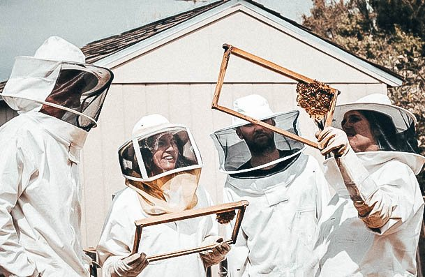 Beekeeping Lessons Date Ideas