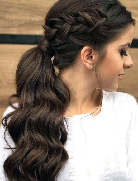 Brunette Braided Pony Hairstyle