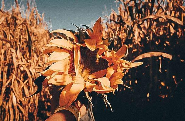 Corn Maze Date Ideas