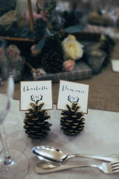 Cute Pine Cone Seat Markers Rustic Wedding Ideas