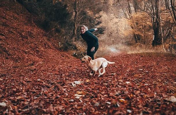 Dog Training Hobbies For Women