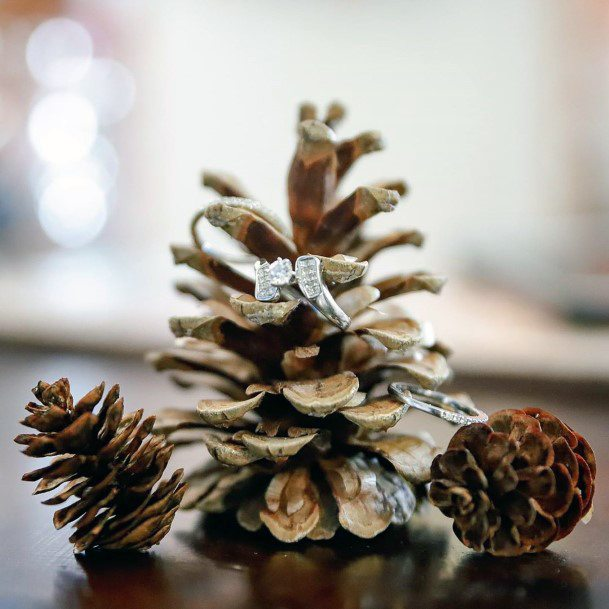 Fall Wedding Ideas Rustic Pinecone Wedding Ring Photo Inspiration