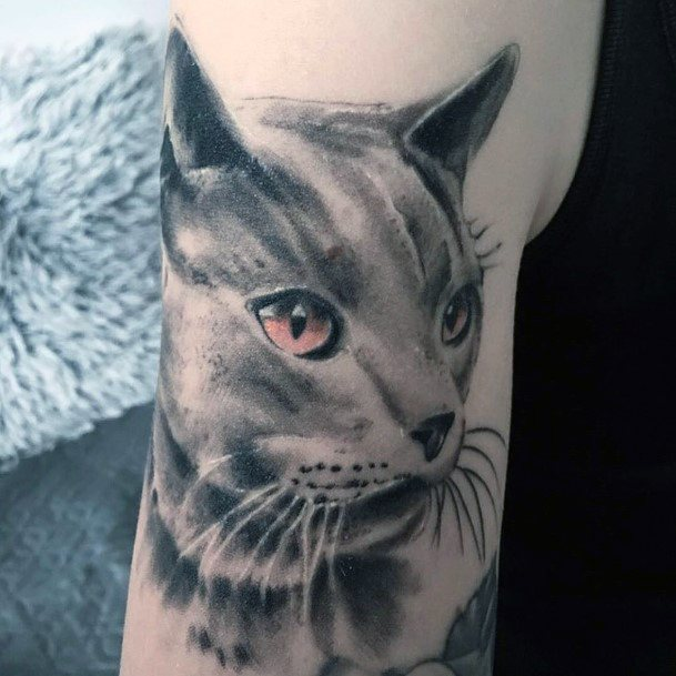 Gleaming Pink Eyed Cat Tattoo For Women Art