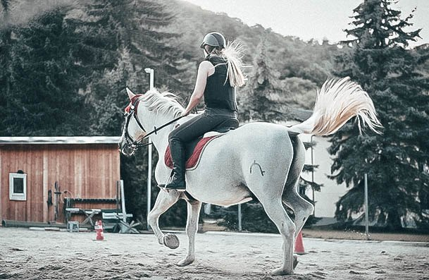 Horse Riding Hobbies For Females
