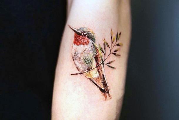 Lovely Hummingbird Tattoo Women Arms