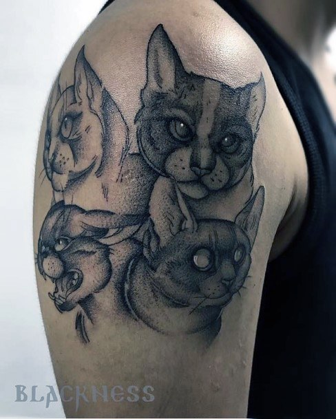 Mutiple Cat Tattoos For Women Arms
