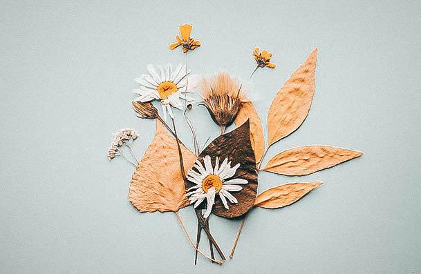 Pressed Flower Art Hobbies For Women
