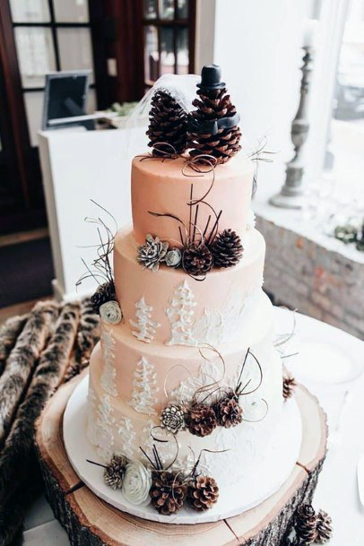 Rustic Wedding Ideas Winter White Cake With Pinecone Decor And Topper