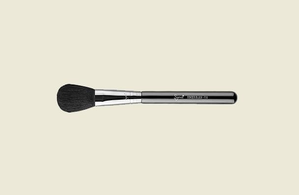 Sigma Beauty F10 Powder Blush Makeup Brush For Women