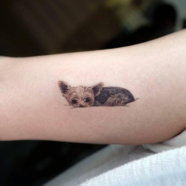 Sleeping Dog Tattoo For Women
