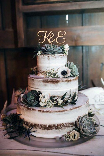Succulents And Semi Naked Frosted Cake Rustic Wedding Ideas