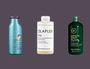Top Womens Best Shampoo