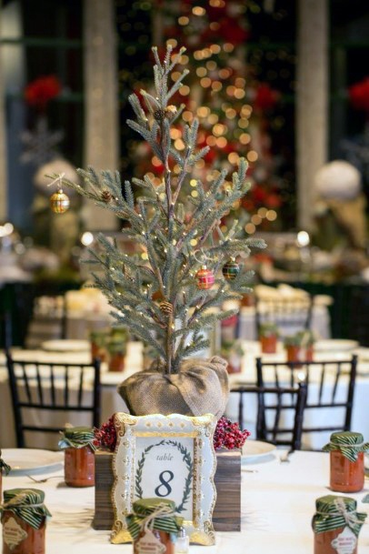 Wedding Centerpiece Ideas Christmas Mini Pine Tree Inspiration