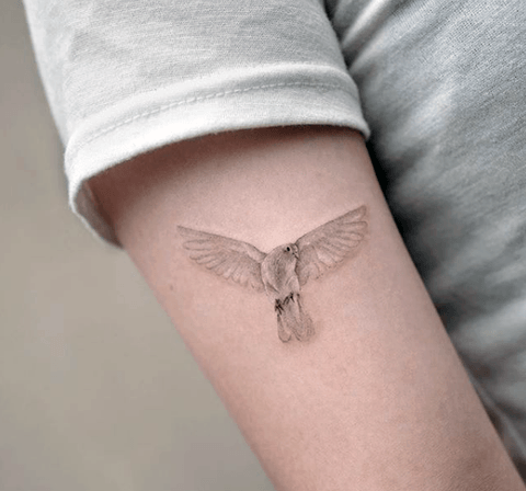 Womens Arms Pretty Dove Tattoo